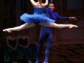 Princess Florine and Bluebird 2