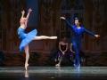 Princess Florine and Bluebird