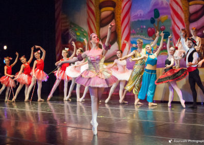 Sugar Plum Fairy and Diversments