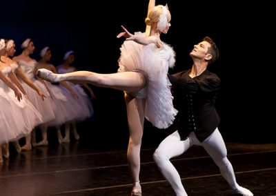Odette and Siegfried and Swans