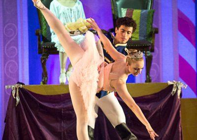 Sugar Plum Fairy and the Nutcracker Prince